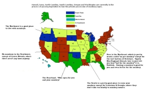 pet-monkey-laws-by-state