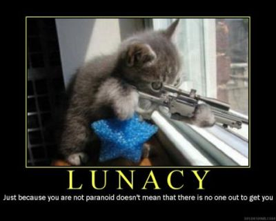 lunacy-kitten_with_a_gun