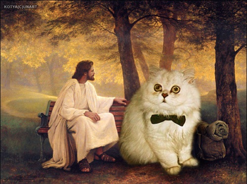 jesus and a big cat