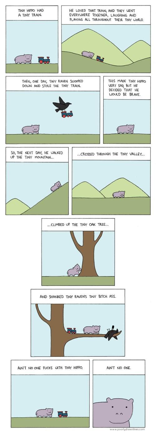 Tiny-Hippo1